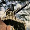 haarlem – windmill